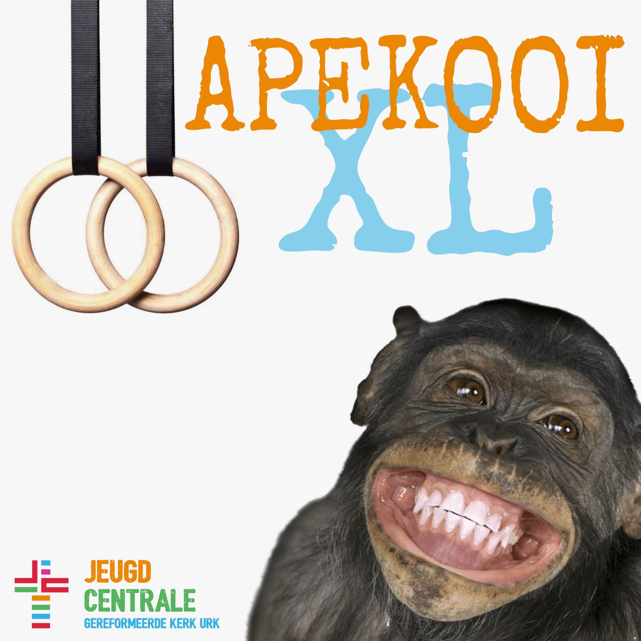 apekooiXL